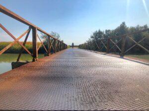 litoranea-veneta-in-bici-percorso